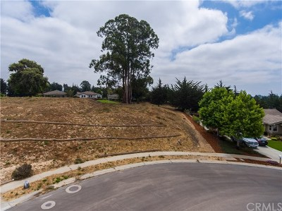 Arroyo Grande Residential Lots & Land For Sale: 2255 Tattler Street