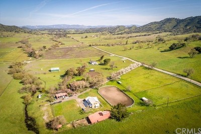Arroyo Grande Single Family Home For Sale: 6050 Huasna Townsite Road
