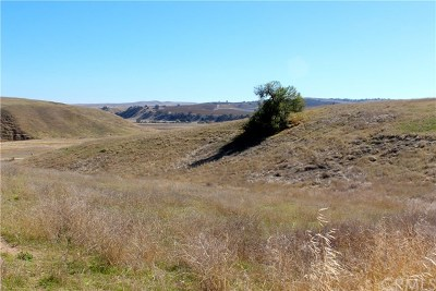 Paso Robles Residential Lots & Land For Sale: 515 Rancho Sheid Way