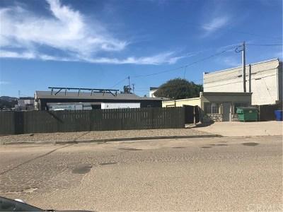 San Luis Obispo County Commercial For Sale: 127 Ramona Avenue