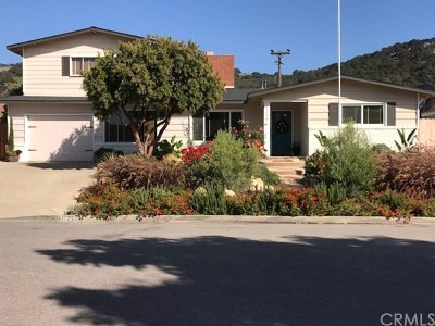 Arroyo Grande Single Family Home For Sale: 1120 Flora Road