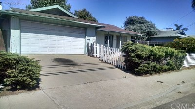 Arroyo Grande Single Family Home For Sale: 950 The Pike