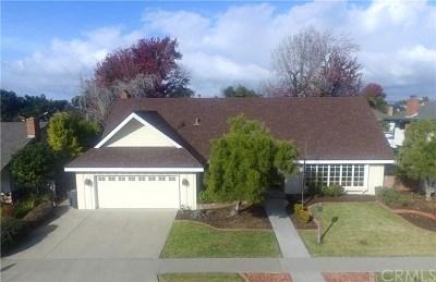 Santa Barbara County Single Family Home For Sale: 379 Cameron Avenue
