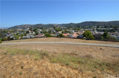 Arroyo Grande Residential Lots & Land For Sale: 221 Cindy Way