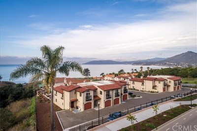 San Luis Obispo County Condo/Townhouse For Sale: 113 Greve Place
