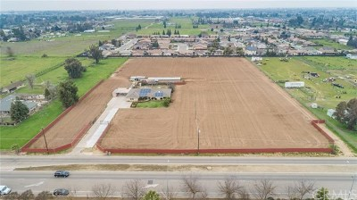 Fresno Single Family Home For Sale: 5666 W McKinley Avenue