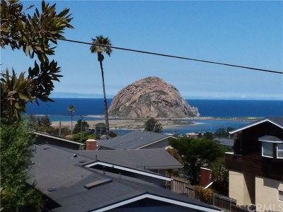 Morro Bay CA Single Family Home For Sale: $1,150,000