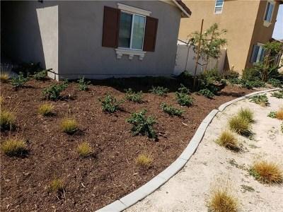 Hemet, San Jacinto Single Family Home For Sale: 1720 Broomwood Drive