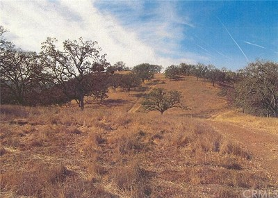 Residential Lots & Land For Sale: Pine Canyon