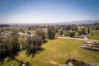 San Luis Obispo County Residential Lots & Land For Sale: 675 Orchard Road