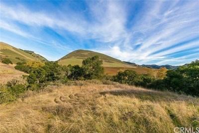 Nipomo Residential Lots & Land For Sale: 625 Spring Canyon Lane