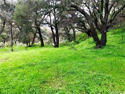 Santa Maria Residential Lots & Land For Sale: Colson Canyon Road