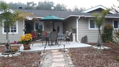 Arroyo Grande Single Family Home For Sale: 440 Golden Oak Lane