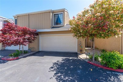 Arroyo Grande Condo/Townhouse For Sale: 838 Huasna Road #14
