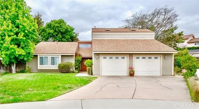 Santa Maria Single Family Home For Sale: 671 Hope Terrace Court