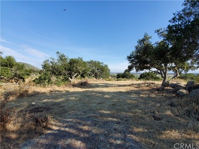San Luis Obispo County Residential Lots & Land For Sale: 680 Riata Lane
