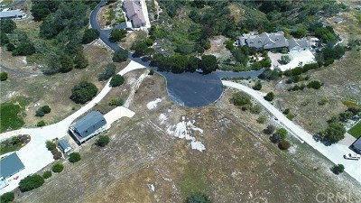 Pismo Beach, Arroyo Grande, Grover Beach, Oceano Residential Lots & Land For Sale: 220 Pioneer Circle