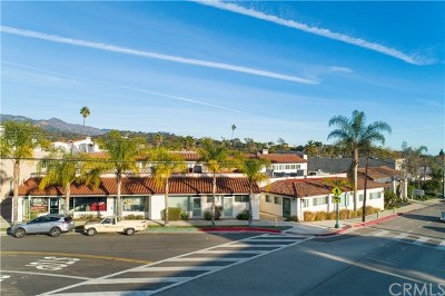 Santa Barbara Commercial For Sale: 37 W Calle Laureles