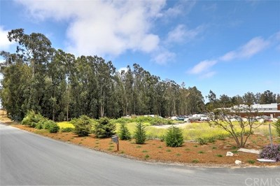 Arroyo Grande Residential Lots & Land For Sale: 2355 Precision Drive