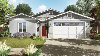 Santa Maria Single Family Home For Sale: 1209 Grand Meadow Way