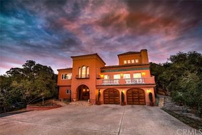 Arroyo Grande Single Family Home For Sale: 1044 Via Chula Robles
