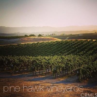 San Luis Obispo County Commercial For Sale: 2651 Pine Hawk Way