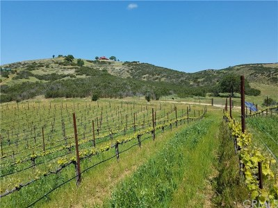 Monterey County Single Family Home For Sale: 31251 Hwy 146