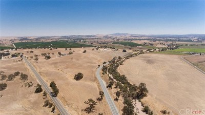 San Luis Obispo County Commercial For Sale: 5225 E Highway 41