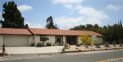 Temecula Single Family Home For Sale: 31073 Del Rey Rd