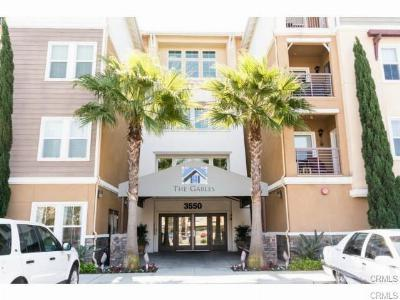 Condo/Townhouse Sold: 3550 Torrance #316