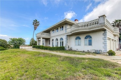Palos Verdes Estates Single Family Home For Sale: 948 Granvia Altamira