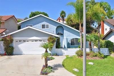 Rancho Palos Verdes CA Single Family Home For Sale: $1,059,000
