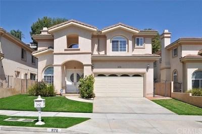 San Pedro Single Family Home For Sale: 870 Miraflores