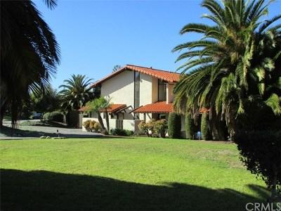 Palos Verdes Estates Single Family Home For Sale: 1705 Dalton Road