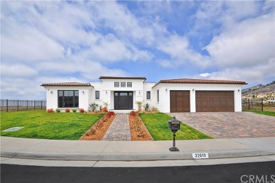 Rancho Palos Verdes Single Family Home For Sale: 32019 Isthmus View Drive