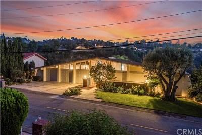 Rancho Palos Verdes Single Family Home For Sale: 19 Martingale Drive