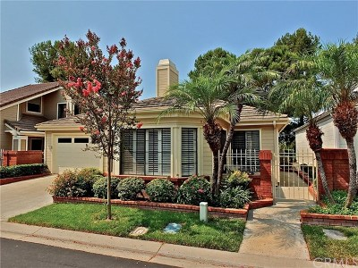 Mission Viejo Single Family Home For Sale: 28377 Borgona