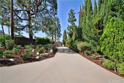 Rancho Palos Verdes Single Family Home For Sale: 15 Rockinghorse Road