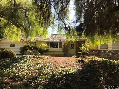 Rolling Hills Estates Single Family Home For Sale: 4 Singletree Lane