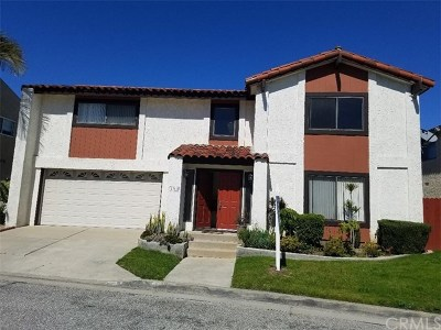 Torrance Single Family Home For Sale: 1115 Gian Drive