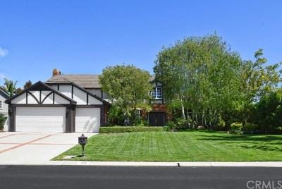 Rancho Palos Verdes Single Family Home For Sale: 38 Santa Barbara Drive