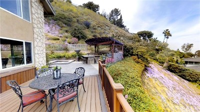Rancho Palos Verdes Single Family Home For Sale: 30051 Knoll View Drive