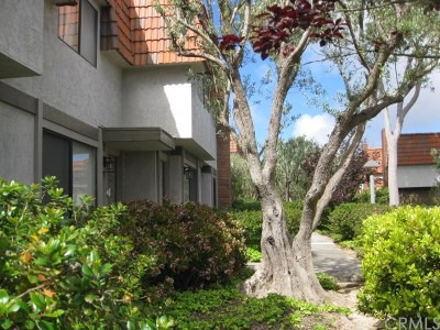 Rancho Palos Verdes Condo/Townhouse For Sale: 27955 Ridgebluff Court