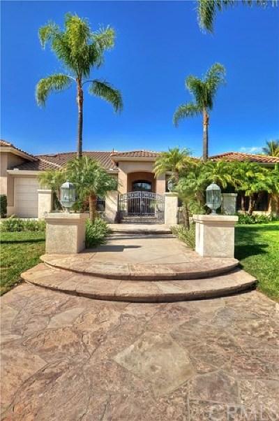 Orange Single Family Home For Sale: 6511 Sycamore Glen Drive