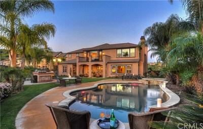 Yorba Linda Single Family Home For Sale: 3891 Belgian Lane