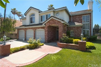 Mission Viejo Single Family Home For Sale: 22345 Birchleaf