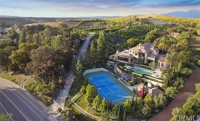 San Juan Capistrano Single Family Home For Sale: 27112 Highland Drive