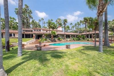 Eastvale Single Family Home For Sale: 13200 Citrus Street