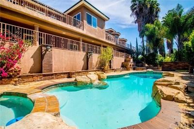 Anaheim Single Family Home For Sale: 5055 E Crescent Drive