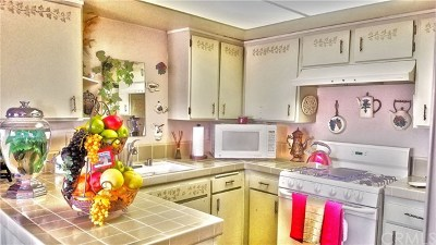 San Clemente Condo/Townhouse For Sale: 214 Via Robina #19